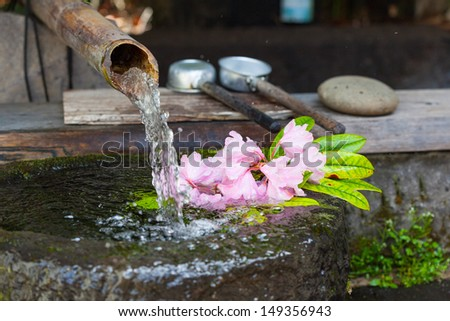 Japanese water basin, called a tsukubai, fed by a bamboo water pipe, or kakei. Pink rhododendron flowers float in the water. - stock photo