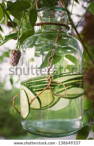 Jar of organic cucumber water dangling from a wisteria vine in the sunlight - stock photo