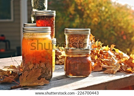 Jars of home canned food on a picnic table in autumn - stock photo