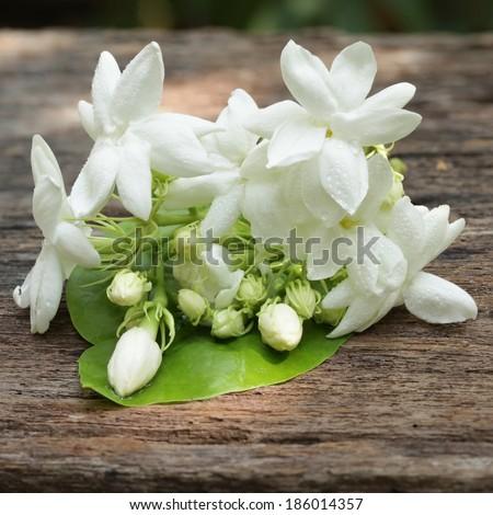 jasmine white flower on wooden background - stock photo