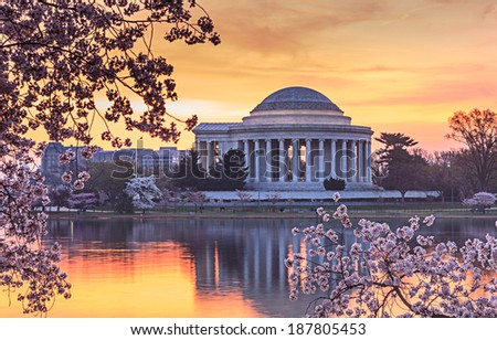 Jefferson Memorial in Washington DC reflecting in the water of the Tidal Basin at sunrise during the cherry blossom festival. - stock photo