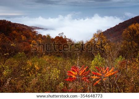 Jeknis Gap Overlook, Shenandoah National Park - stock photo