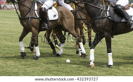 Jersey City, NJ USA - June 4, 2016: Polo game between Balck Watch and Veuve Clicquot at Liberty State Park - stock photo