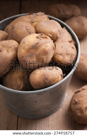 Jersey Royal new potatoes fresh out of the ground grown on the channel island of Jersey - stock photo