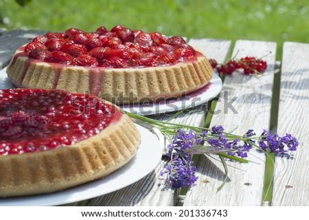 Johannisbeerkuchen und Erdbeerkuchen auf Gartentisch - stock photo