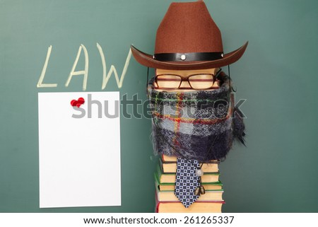 Joke law concept - stock photo