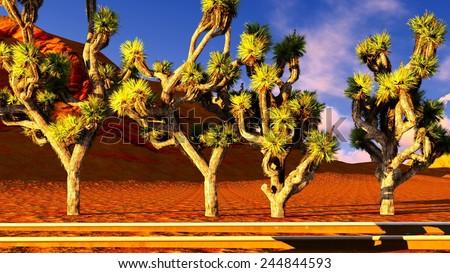 Joshua trees growing along old railway - stock photo