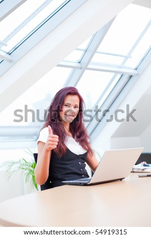 jubilating female clerk with laptop sitting in office - stock photo