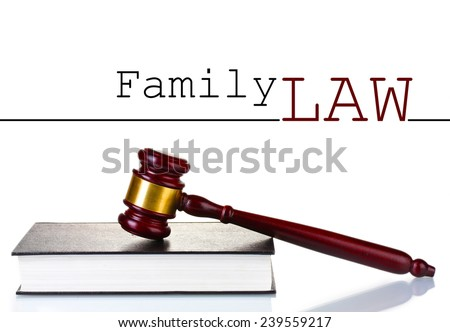 Judge's gavel and book with space for text isolated on white - stock photo