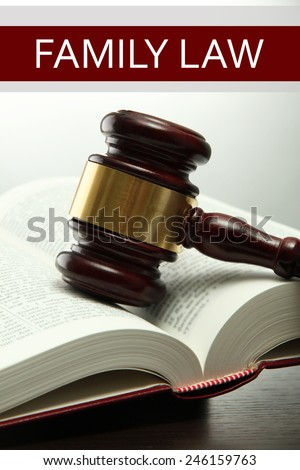 Judge's gavel on book and Family LAW text on light background - stock photo