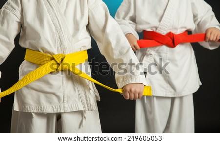 Judo Karate martial Arts - stock photo