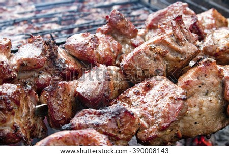 juicy a shish kebab on the grill - stock photo