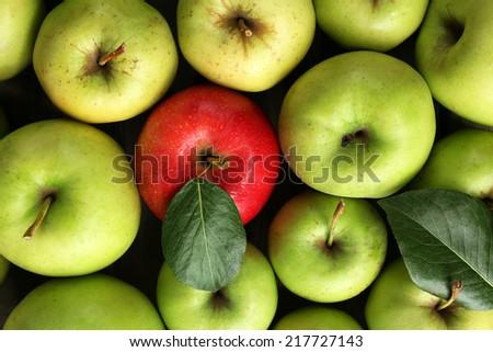 Juicy apples, close-up - stock photo