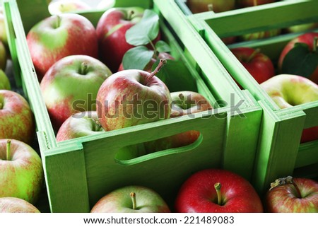 Juicy apples in boxes, close-up - stock photo