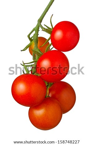 Juicy cherry tomatoes hanging on a vine, white background - stock photo