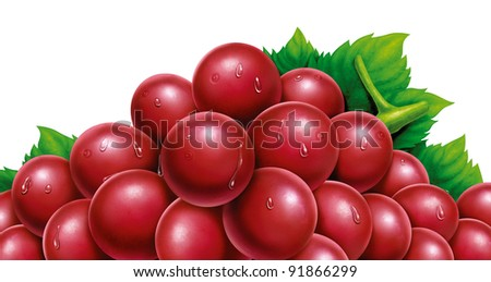 juicy fresh water drops of grapes with white background - stock photo
