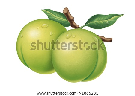 juicy fresh water drops of plum with white background - stock photo