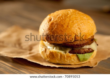 Juicy Hamburger on paper wrapping - stock photo