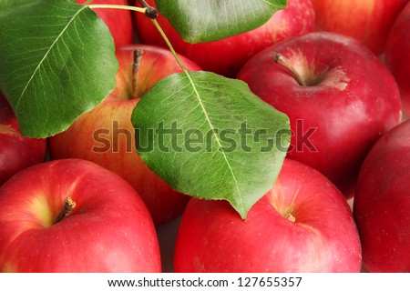 juicy red apples with green leaves, close up - stock photo
