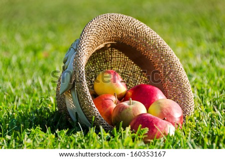 juicy ripe apples got enough sleep from a straw hat in a grass - stock photo