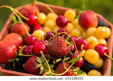 Juicy, ripe, summer fruits. Organic fruit. - stock photo