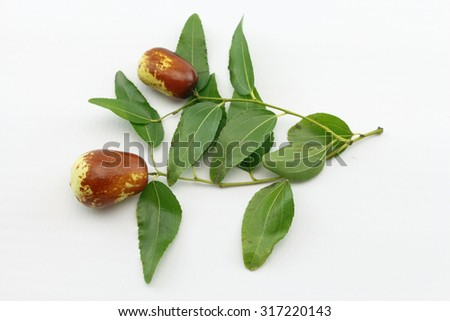 Jujube fruit closeup on branch with green leaves,isolated on white background - stock photo