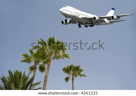 Jumbo is flying over palms ready to land - stock photo