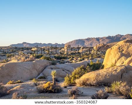 Jumbo Rocks at sunset in Joshua Tree National Park, California, USA, where the Mojave and Colorado desert ecosystems meet. - stock photo