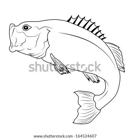 Jumping Bass Fish Outline Illustration. Raster version with clipping path - stock photo