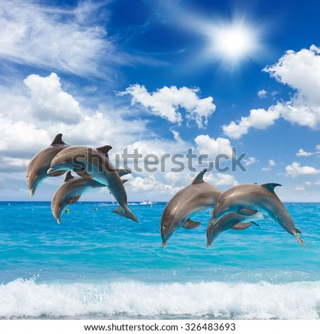 jumping dolphin, seascape with turquoise sea  waters and cloudscape - stock photo