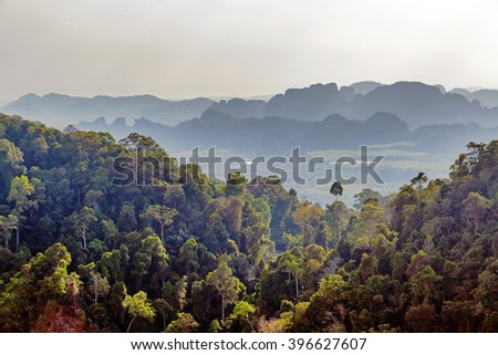 jungle and sky landscape tropical - stock photo