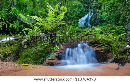Jungle background, mountain creek HDR photography. Deep rain forest in Thailand. - stock photo