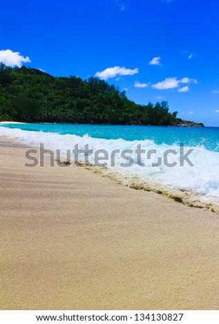 Jungle Dream Landscape - stock photo