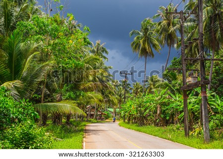 Jungle in Thailand before the tropical storm - stock photo