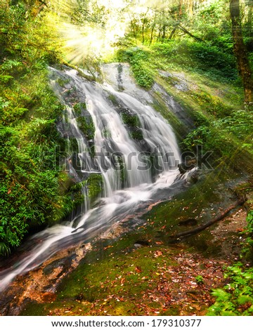 Jungle landscape with small waterfall, hidden in tropical rain forest and shining sun rays. Thailand - stock photo