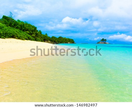 Jungle Tranquility Palms  - stock photo