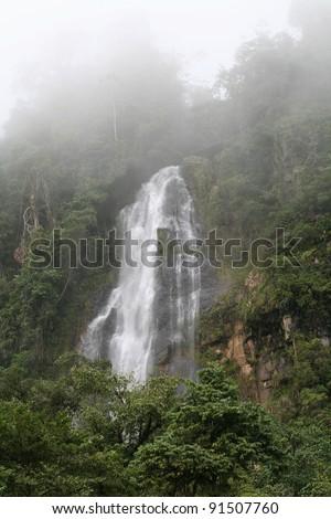 Jungle Waterfall - stock photo