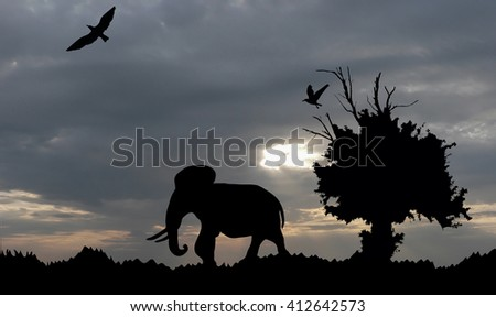 Jungle with old tree, birds and elephant on sea sunset with grey cloudy sky background - stock photo