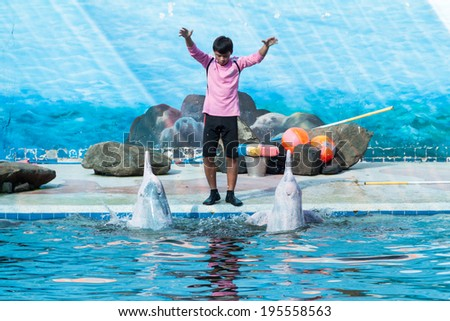 JUNTHABURY, THAILAND, DECEMBER 2,2012 Unidentified trainer perform the show of dolphin dancing around the pool at Oasis Sea World, Junthabury Thailand - stock photo