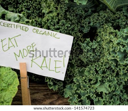 Just harvested organic kale at Maryland farm market. - stock photo