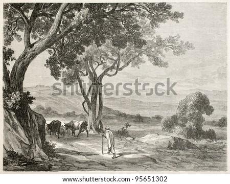 Kabylie, Algeria: the route to Fort Napoleon. Created by Dohusset, published on Le Tour Du Monde, Paris, 1867 - stock photo