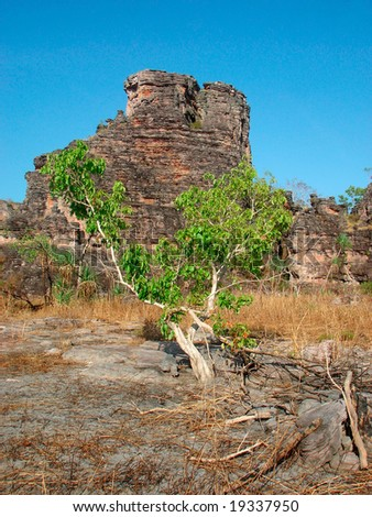 Kakadu National Park  - Australia - stock photo