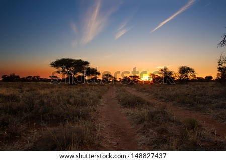 Kalahari sunset with trees grass and blue sky and road - stock photo