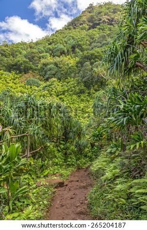 Kalalau trail hike on the Na pali coast, Kauai, hawaii - stock photo