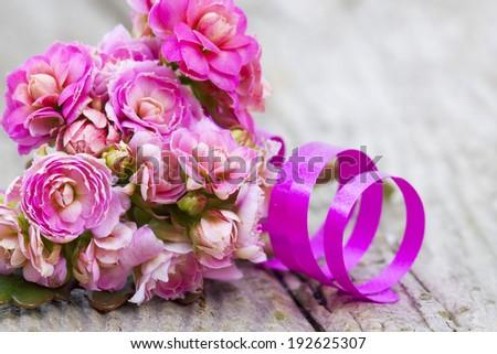 Kalanchoe flower - stock photo