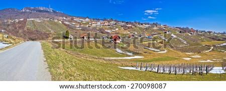 Kalnik mountain vineyards and cottages panorama, Prigorje, Croatia - stock photo