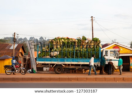KAMPALA, UGANDA - NOV 1: A truck full of bananas on November 1, 2012 in Kampala, Uganda. Ten million tonnes of bananas are grown in Uganda every year, making it the world's second largest producer. - stock photo