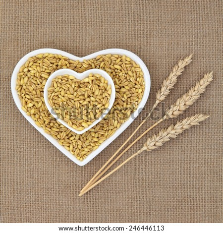 Kamut khorasan wheat in heart shaped dishes over hessian background with ears of wheat. - stock photo