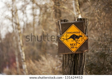 Kangaroo next 300 m sign - stock photo