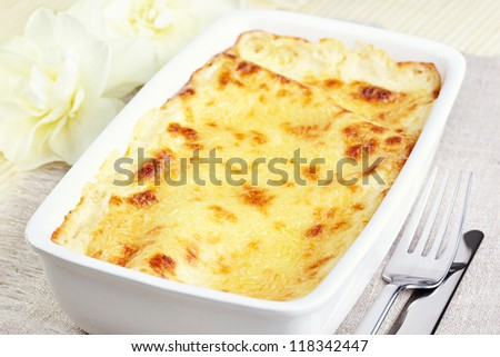 Kannelloni with chicken and mushrooms baked in sauce bechamel - stock photo